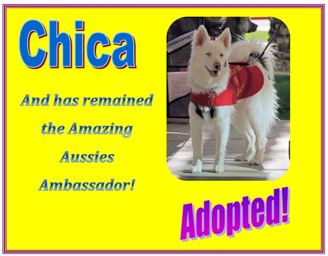chica adopted