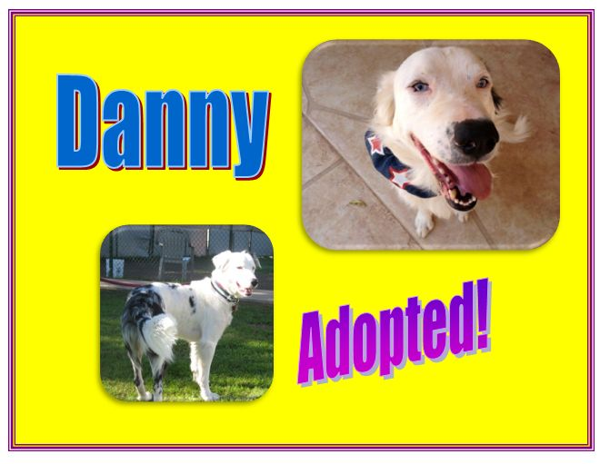 danny adopted