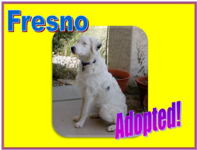fresno adopted
