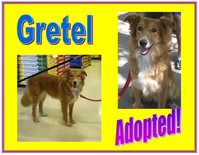 gretel adopted