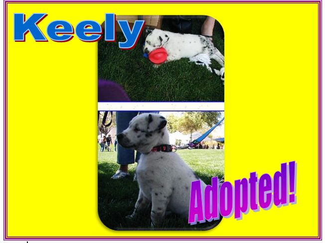 keely adopted